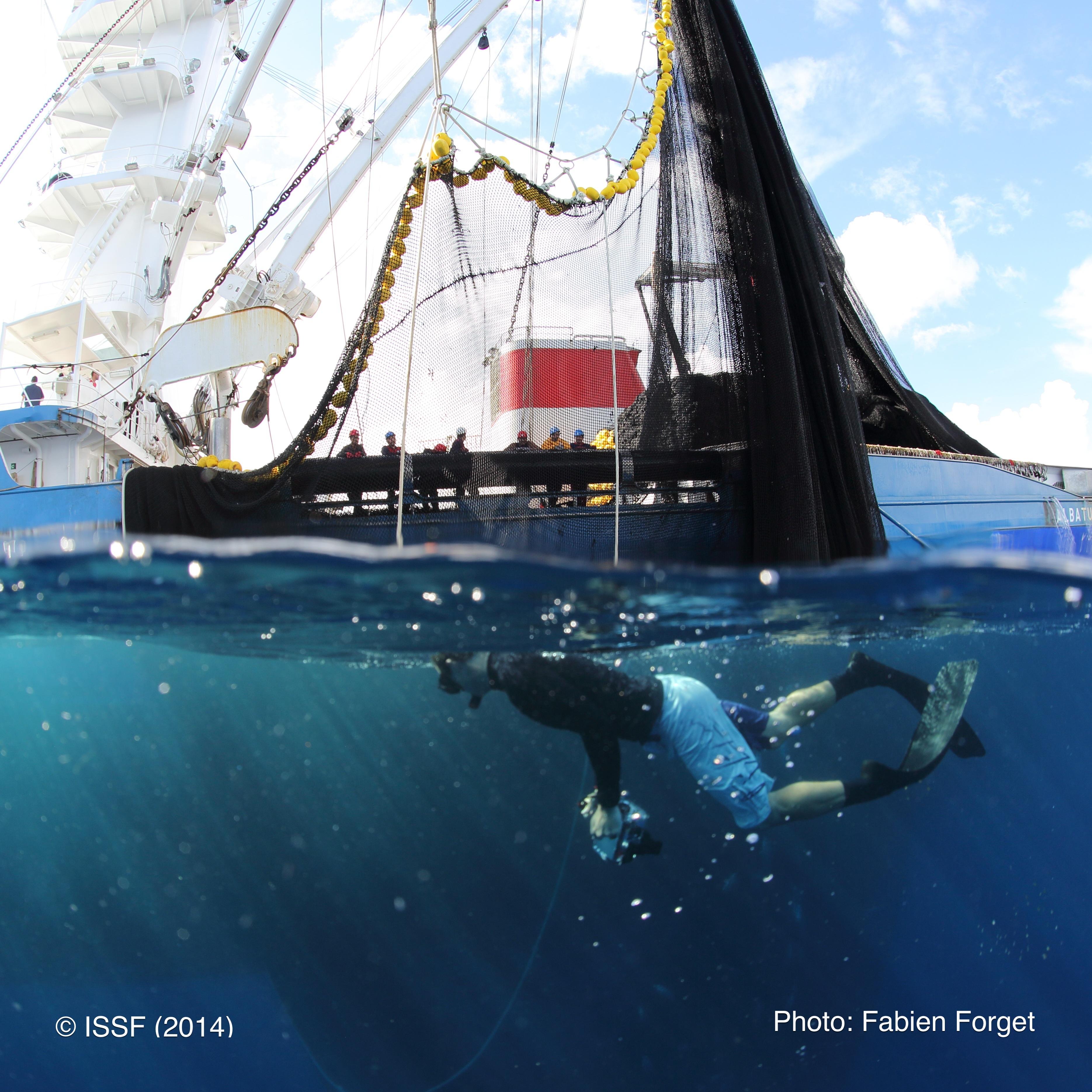 2014.05-WCPO-FabienForget-532